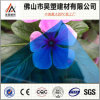 Solid Polycarbonate Sheet PC Sheet for Swimming Pool Cover