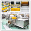 Manufactured Fruit Vegetable Washing Equipment