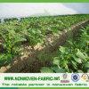 Spunbond Non Woven Crop Cover Fabric