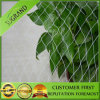 Diamond Bird Net and Hexongal Bird Net Hot Sale