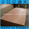 3 Layer Poplar Sheet Plywood