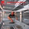Hot Galvanized Chicken Breeding Farm Machinery Battery Layer Cage with Automatic Equipments