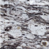 Polished White Oyster Granite for Countertops of Kitchen & Bathroom (MT007)