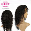 Quercy Brazilian Virgin Human Hair Silk Top Lace Front Wig Body Wave Full Lace Human Hair Wig with Baby Hair (hw-047b)