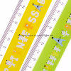 Greensource, Heat Transfer Film for Plastic of Stationery Ruler