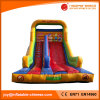 Animal Inflatable Moonwalk Toy/Inflatable Slide with Two Lane (T4-261)