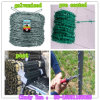PVC Coated and Galvanized Barbed Wire Hot Dipped 200-500m for Farm Fence