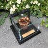 Luxury Acrylic Flower Gift Display Box Plexiglass Display Cases