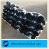 Seamless Carbon Steel U Pipe Bend 180 Deg Elbow