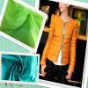 100% Nylon Taffeta for Garment Fabric Down Jacket Fabric