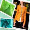 100% Nylon Taffeta for Garment Fabric Down Jacket Fabric