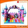 2017 Giant Inflatable Double Lanes Slide for Amusement Park (T4-516)