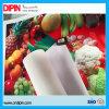 Hot Selling PVC Adhesive Vinyl for Printing