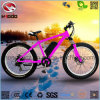 500W Electric Fat Tire Beach Bike Hydraulic Suspension