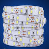 Fashionable Strip 19.2W/M SMD 5630 LED Strip Lighting