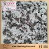 G439 Big Flower White Granite Colorful Factory Granite Slab