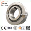 Nf Series Roller Type Freewheel Bearing