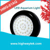 Dimming Soft Start LED Light Aquarium for Salty Aquatics (HWG-01)