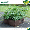 Onlylife Oxford Tomato Vegetable Grow Bags for Home Garden