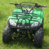 1000W Electric ATV (FEA1000-2)