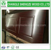 Cheaper Price Mold Panel Door Skins