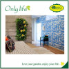 Onlylife Don′t Need Special Caring Eco-Friendly Grow Vertical Planter