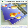 5mm Eco-Solvent Printing PS Foam Board for Advertising