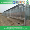 High Quality Tempered Glass Greenhouse Kits for Tomato