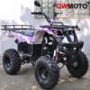 250CC Quad Bike (QW-ATV-08D)