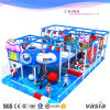 Amusement Indoor Playground for Plastic Garden