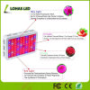 300W-1200W Full Spectrum LED Grow Light for Indoor Greenhouse Planting Flowers/Seeds/Vegetables