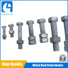 Manufacturing Machinery Price Standard Size Stainless Steel Hex Bolt and Nut