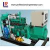 4 Stroke 25kw Biogas Generators