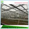 Glass Garden Greenhouse for Flower