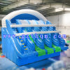 Kids and Adults Customized Big Inflatable Water Slide/Biggest Inflatable Slide