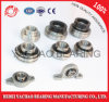 China Ycz Chrome Steel Pillow Block Bearing (Uc204 Ucp204 Ucf204 Ucfl204 Uct204)