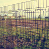 Hot Sale PVC Coated Galvanised Welded Mesh Fence
