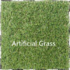 High Quality Grass Turf Good Price Artificial Grass for Sale Sythenic Grass