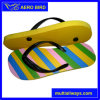 New Colorful Stripe Sole 2016 PE Slipper