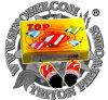 Peg-Top Spinner Fireworks Toy Fireworks