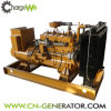 China Best Brand Cw-50gfz Portable Gas Generator/Small Gas Generator