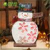 Flat Snowman Xmas Solar Lights for Christmas Decoration (NF30098A)