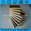 Plywood 12mm, Film Faced Shuttering Plywood, Soft Plywood