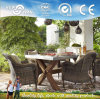 Garden Dining Set/ Garden Sofa/ Garden Furniture