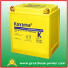 High Quality Motorcycle Battery 32ah 12V