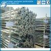 Factory Price Steel Prop Adjustable for Formwork