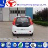 High Speed Chinese Electric Cars for Sale D101