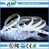 Decrated Green LED Strips super brightness SMD5730 Strip Light