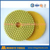 Wet Diamond Polishing Pads / Stone Polishing Pad