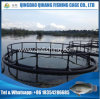 Circular Fish Cage, High Production Fish Farm Use Cages